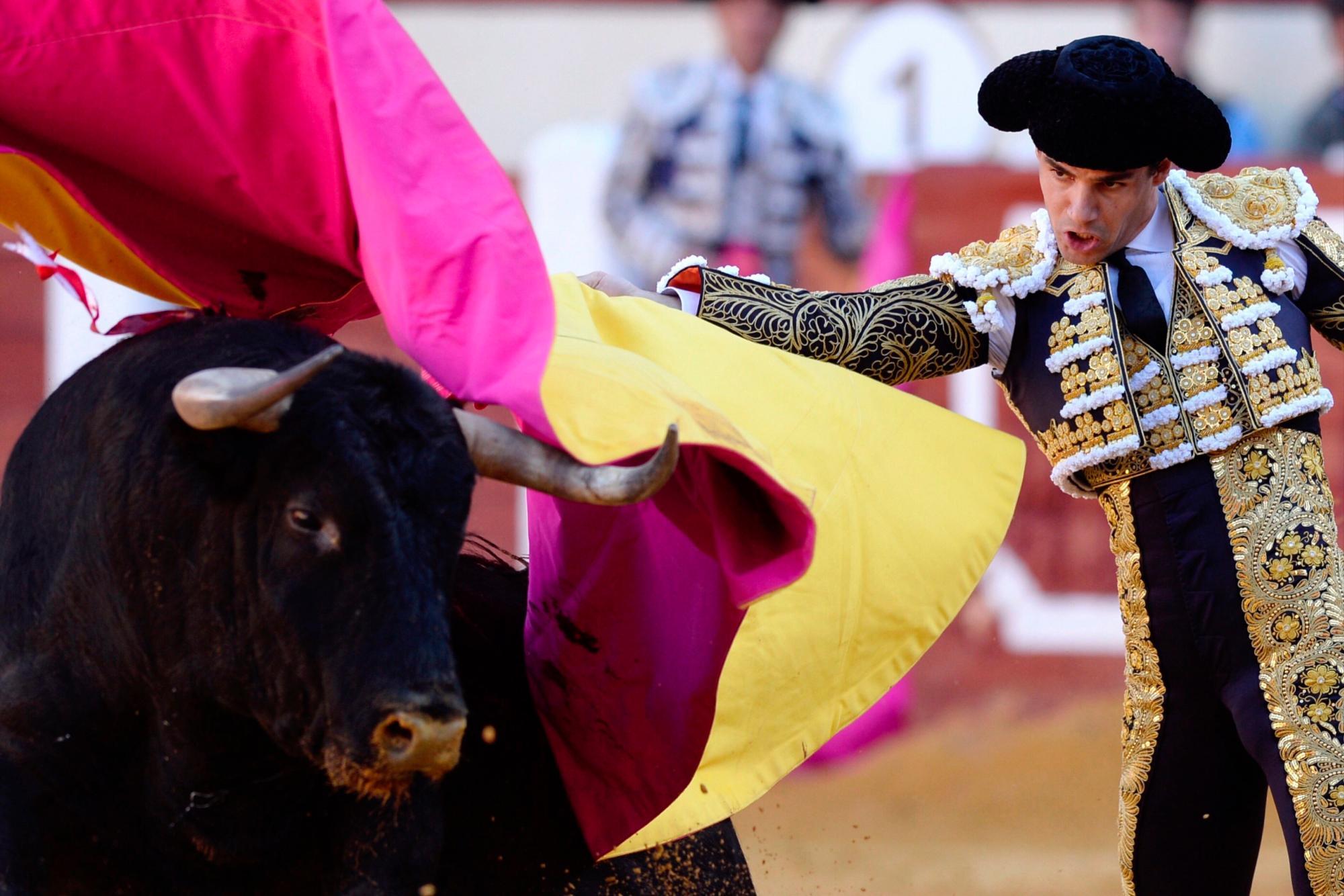 Pablo Aguado inaugura el 2021 con una bellísima faena en Ubrique