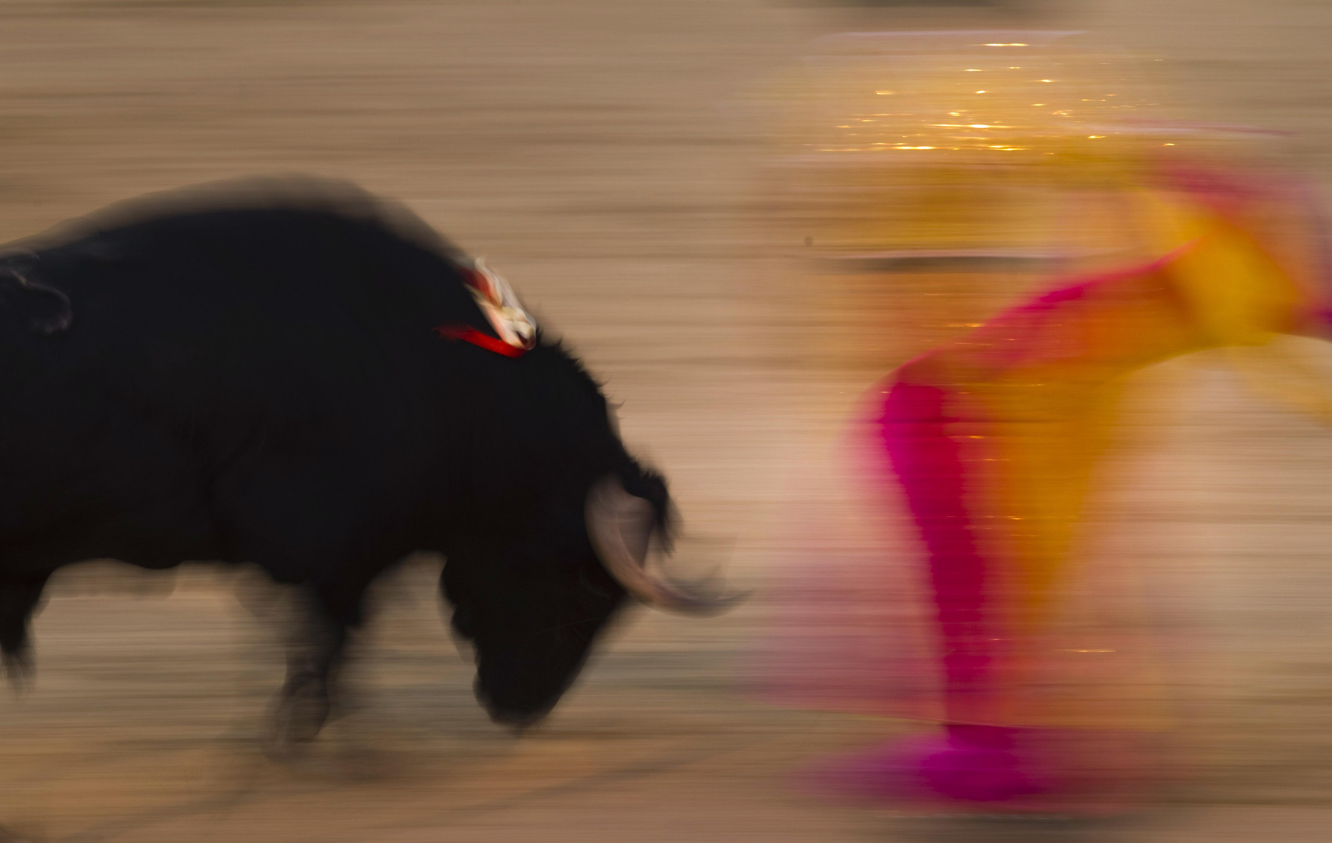 Elda rehabilitará su plaza de toros
