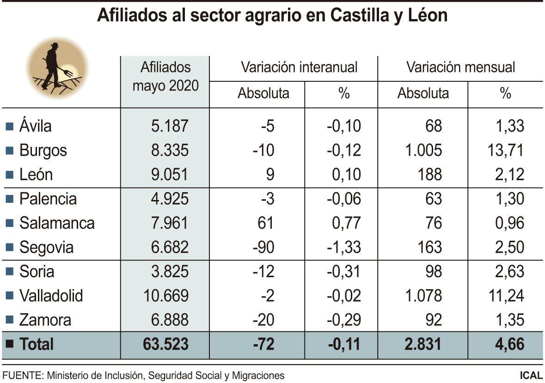 Afiliados al sector agrario de Castilla y León