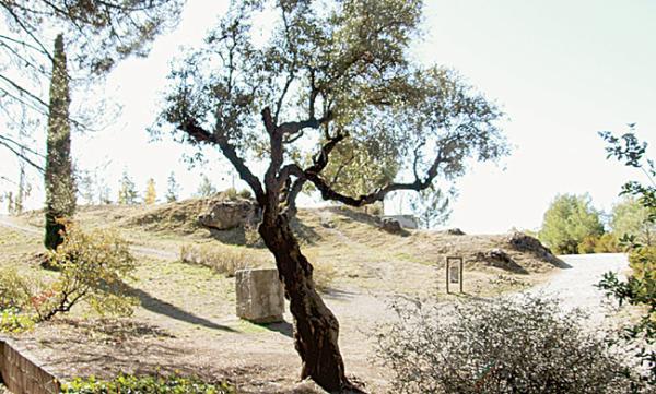 Otro de los lugares donde se ha barajado que esté el cuerpo de Lorca sin que haya sido hallado
