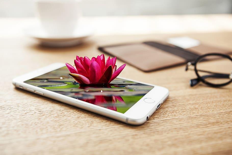 Smellphones, teléfonos que envían mensajes y fotos con olor