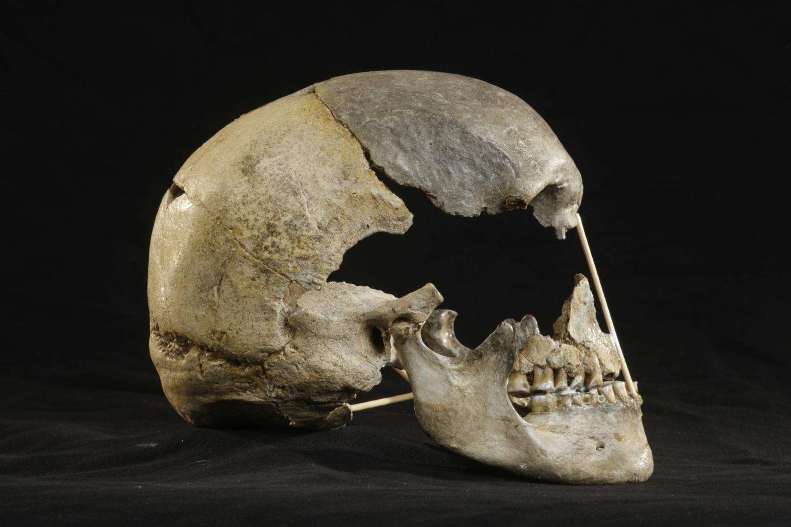 Encontrado el ADN de humano moderno más antiguo hasta la fecha