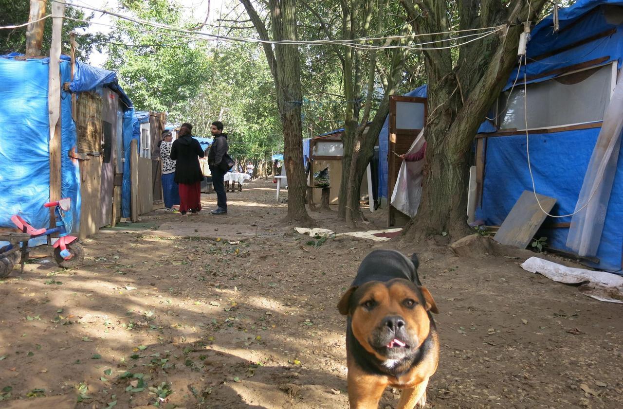 De bidonvilles en hôtels sociaux : au cœur du «triangle des Bermudes du 91»