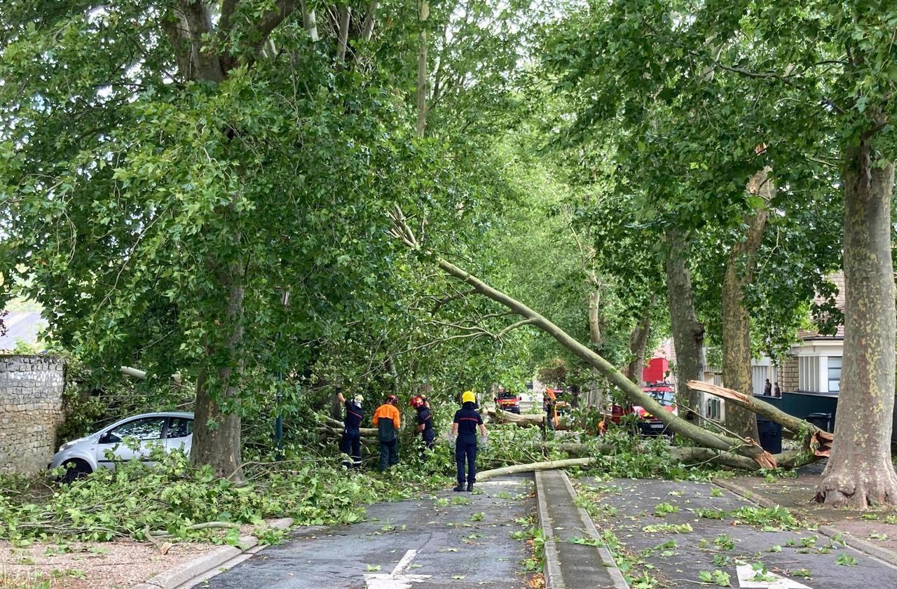Magny-en-Vexin : inondations et arbres brisés après les pluies diluviennes