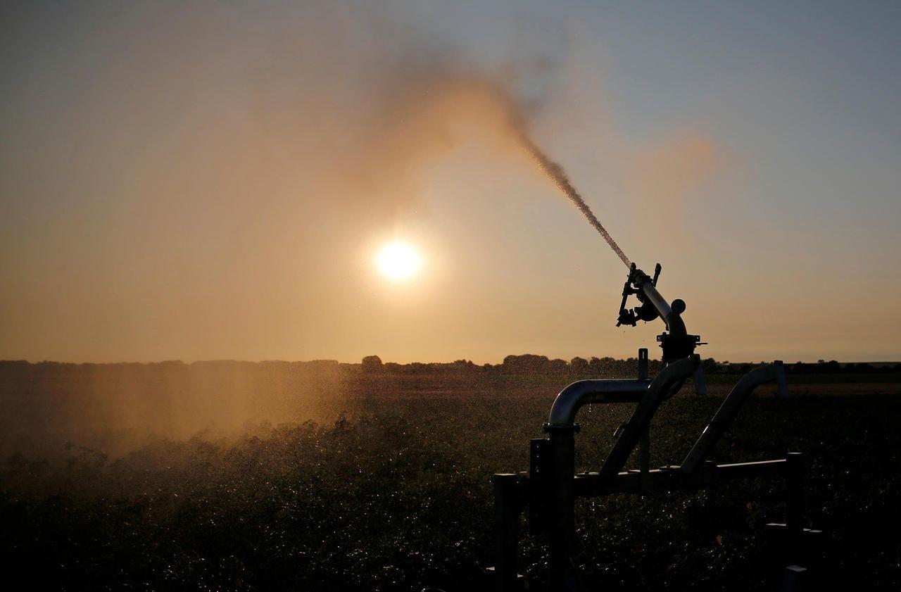 Les 27 Etats européens d'accord sur une politique agricole commune plus verte, les ONG voient rouge