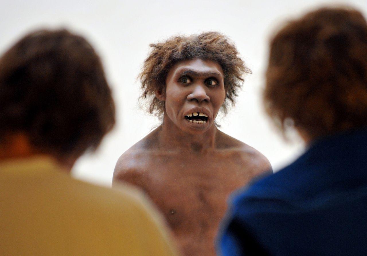 L'homme de Néandertal pouvait parler comme nous - Le Parisien