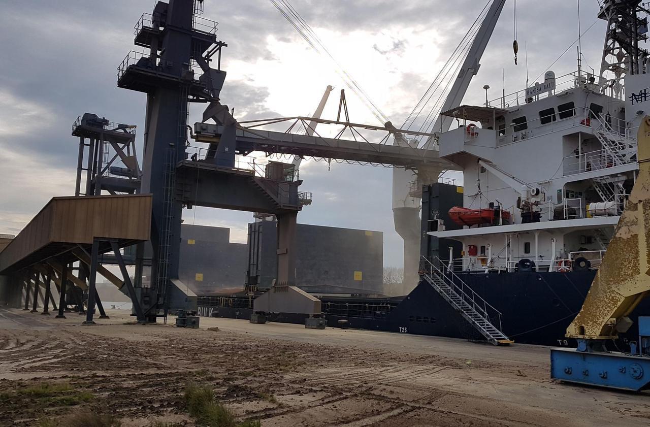 Pendant le confinement, le blé s'est bien exporté sur le port de Caen