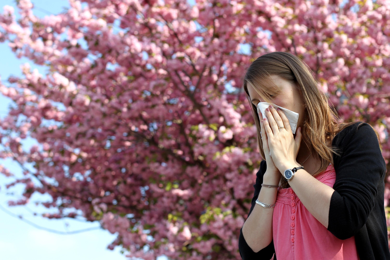 Covid-19 : une étude fait le lien entre nombre d'infections et pics de pollens - Le Parisien