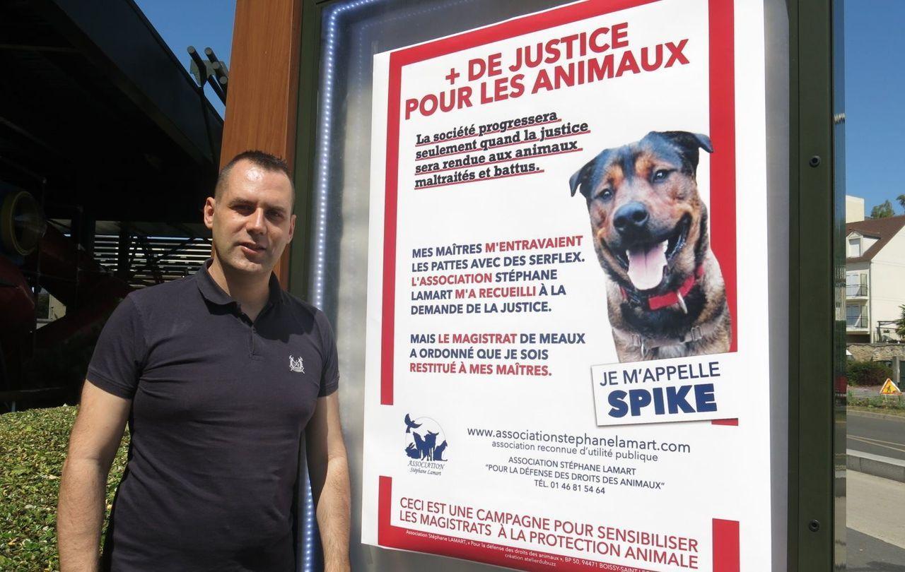 Rozay-en-Brie : les maîtres du chien maltraité Spike finalement condamnés