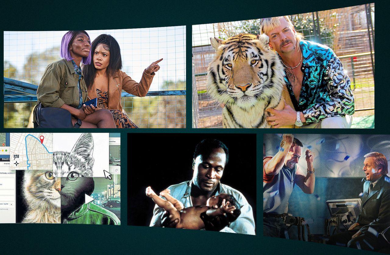 «I May Destroy You», «Quiz», «Tiger King»… 5 séries qu'on a tant aimées