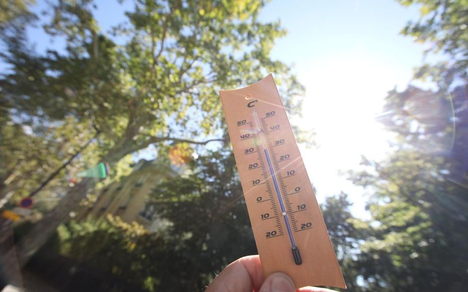 Météo : pourquoi des températures printanières arrivent-elles si tôt après une vague de froid ? - Le Parisien