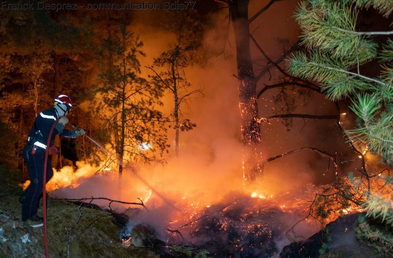 Feux de forêts : comment les pompiers d'Ile-de-France se préparent au pire
