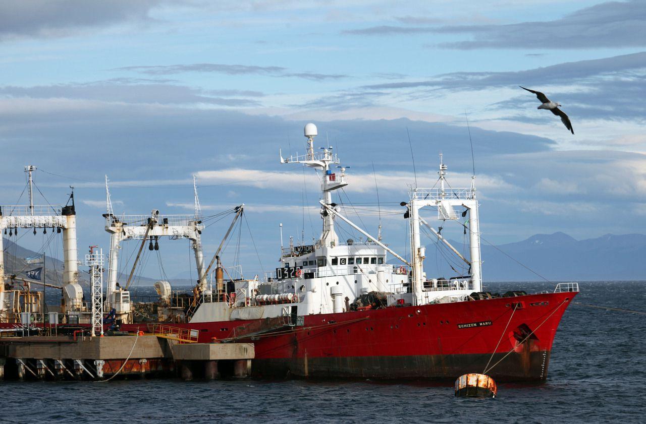 Mystère en Argentine : des marins testés positifs après 35 jours en mer