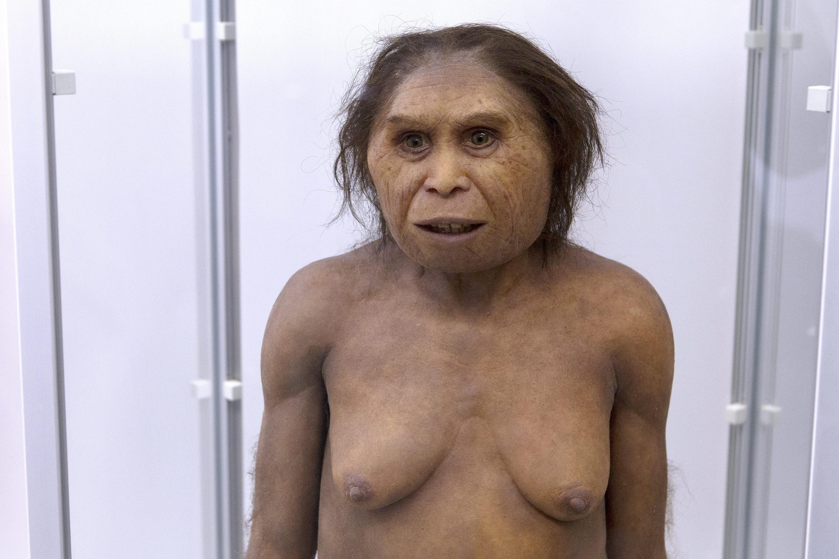 Cueillette, cuisine et maternité ? Oubliez tous vos clichés sur les femmes préhistoriques !