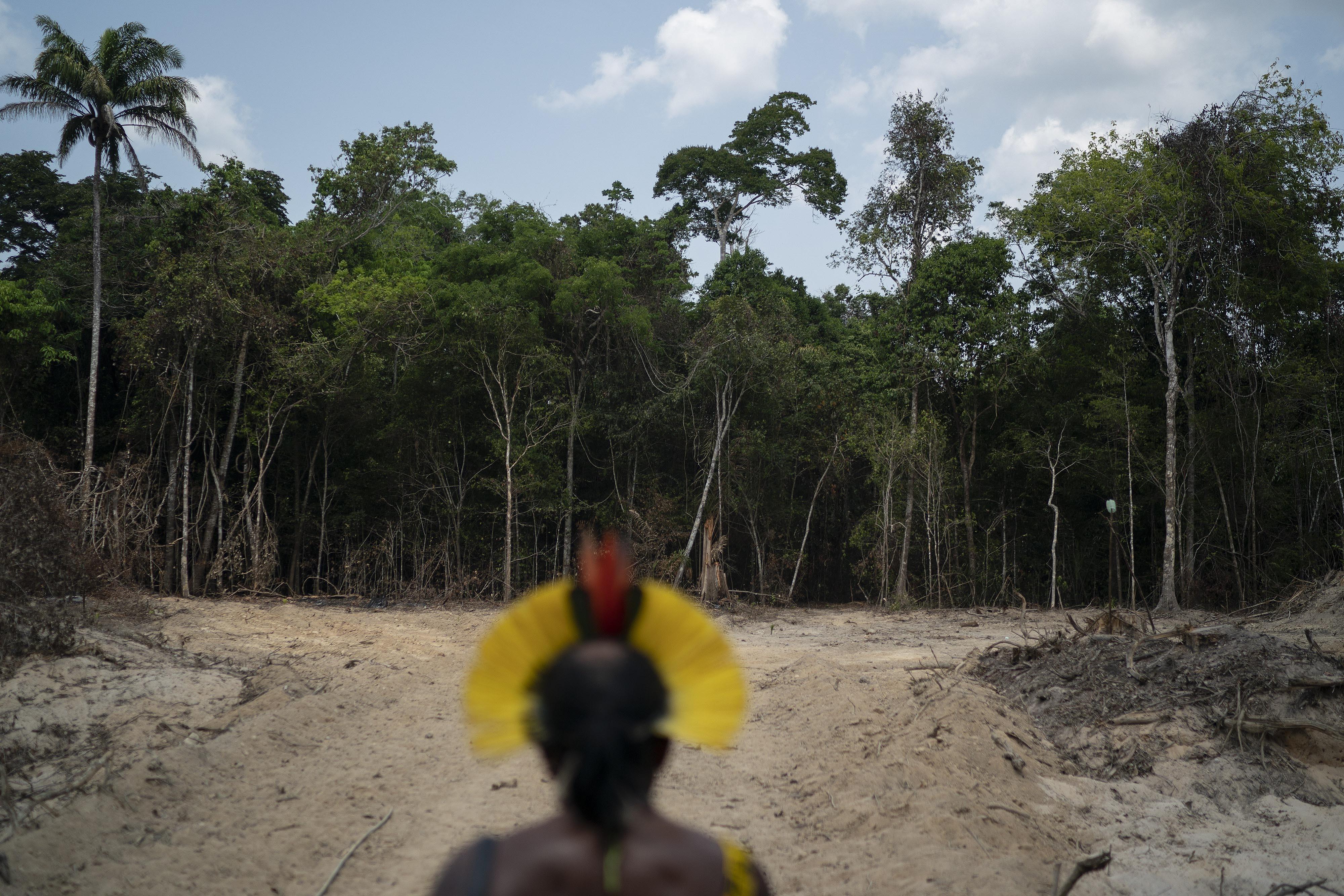 La Amazonia en negociación: Bolsonaro pide 10.000 millones de dólares al año para frenar su destrucción