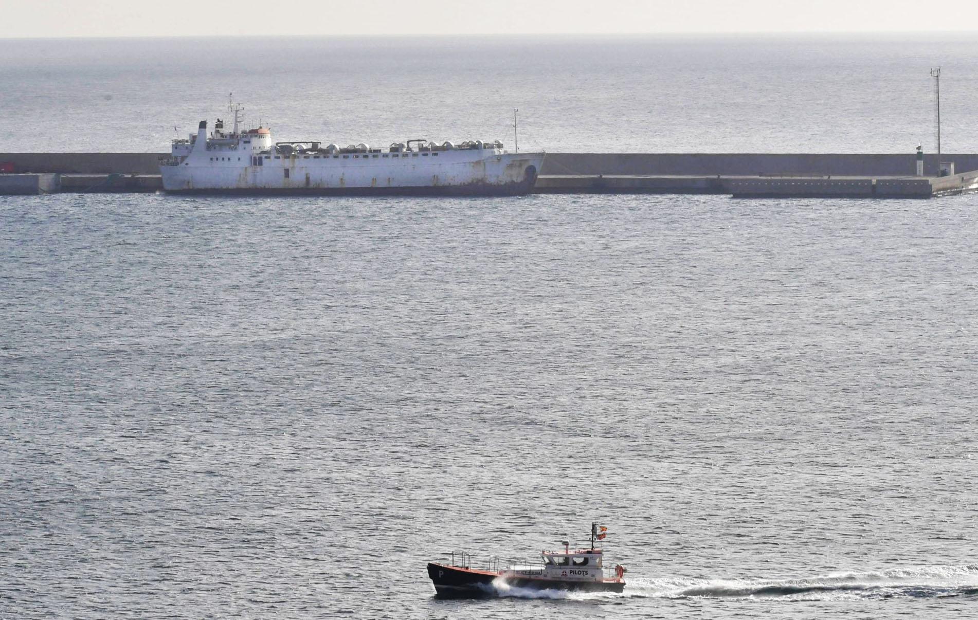 Un barco cargado con 900 vacas que nadie quiere vuelve a Cartagena tras dos meses en el mar