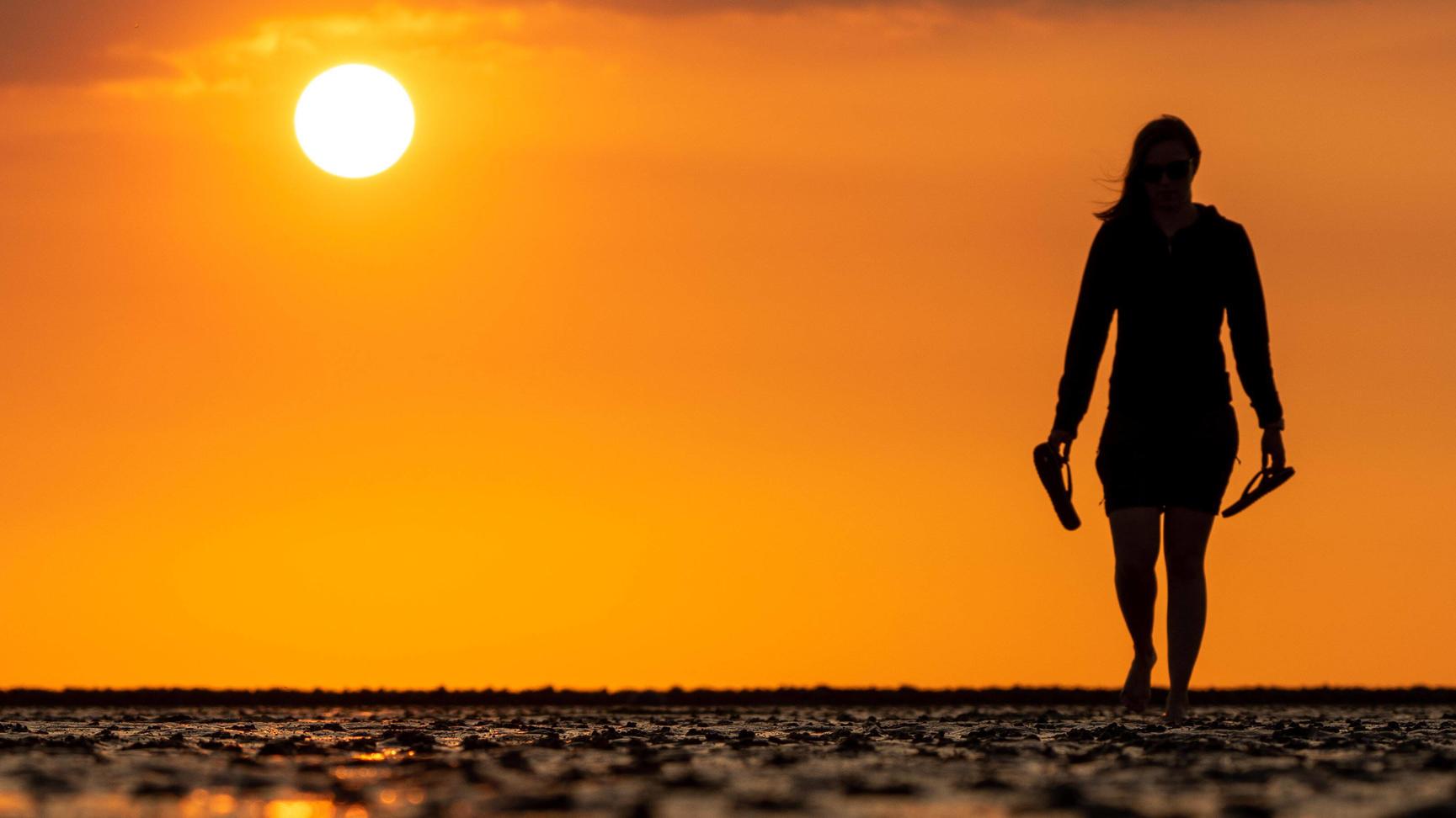 Urlaubsrekord in Schleswig-Holstein: 5 Millionen Buchungen an einem bestimmten Ort