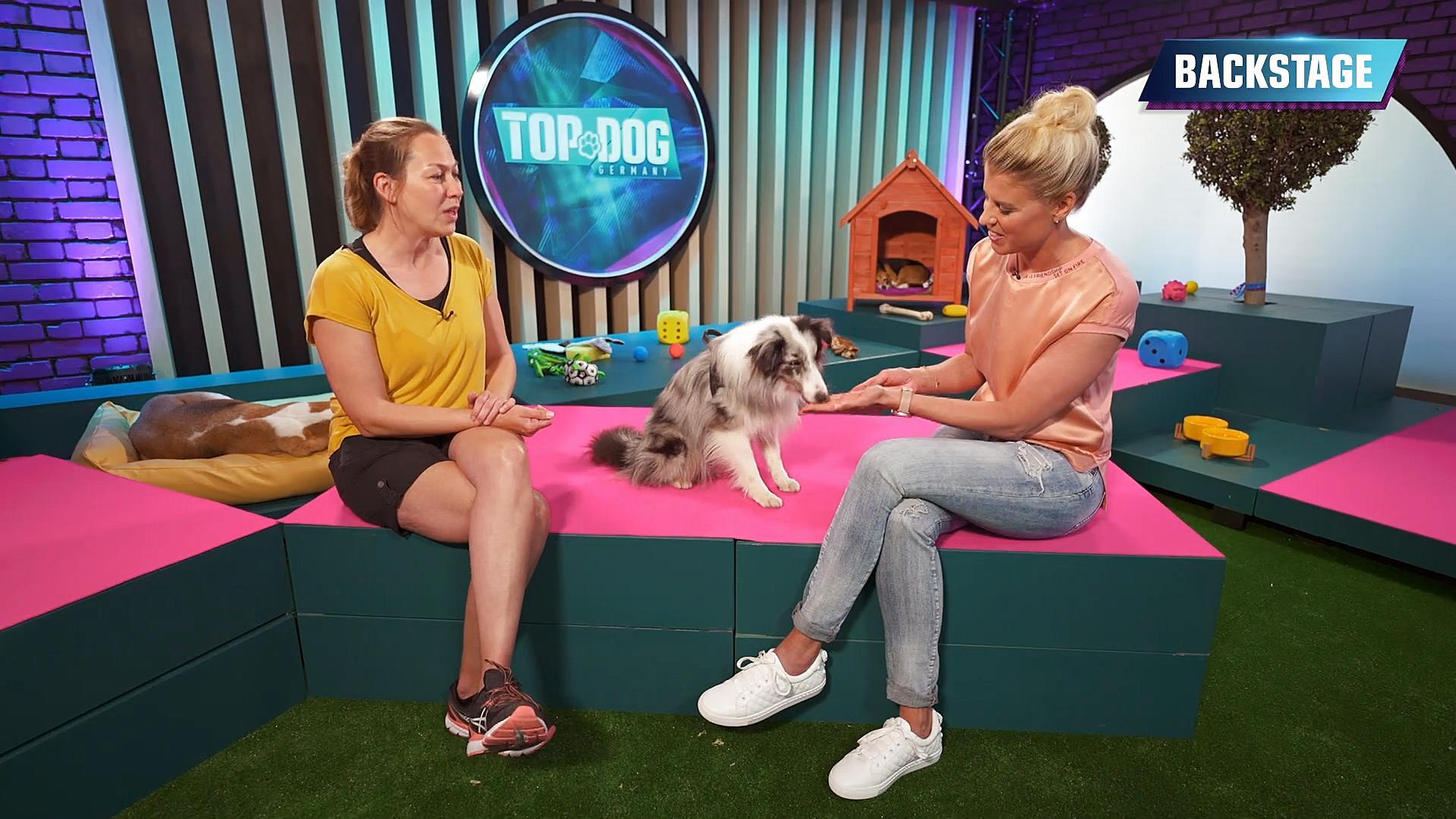 Top Dog Germany: Sabine und ihr einäugiger Sheltie Niels wollen anderen Mut machen
