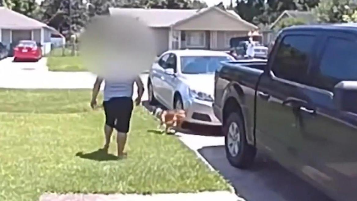 Texas: Mutter schießt auf Boxer-Welpen und trifft Sohn (5) in den Bauch
