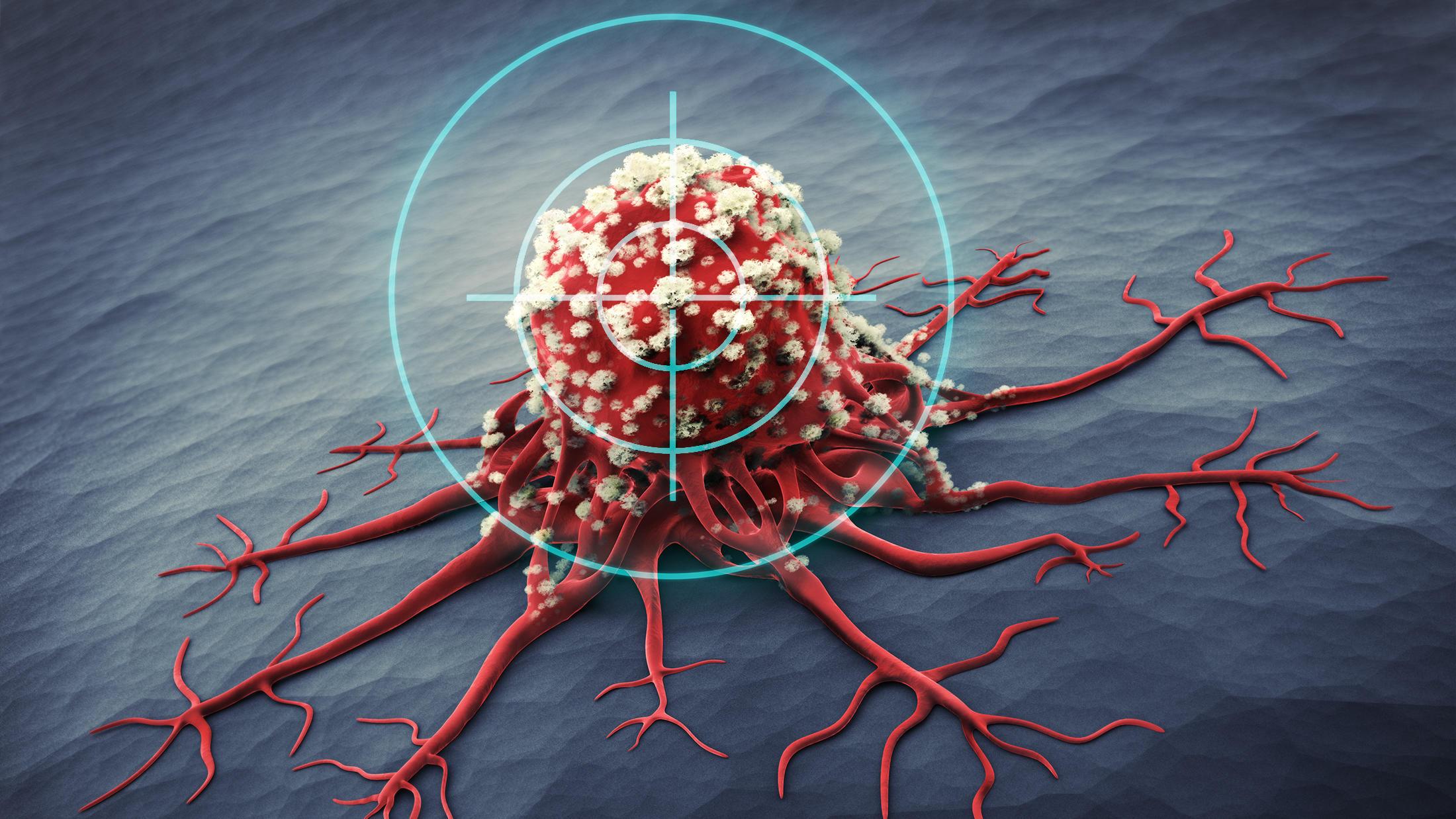 Kölner Forschern gelingt Durchbruch im Kampf gegen Krebs