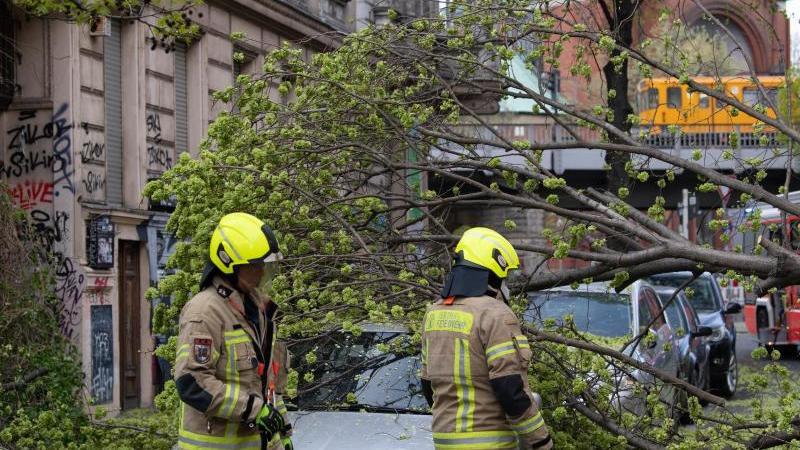 60 wetterbedingte Einsätze der Berliner Feuerwehr
