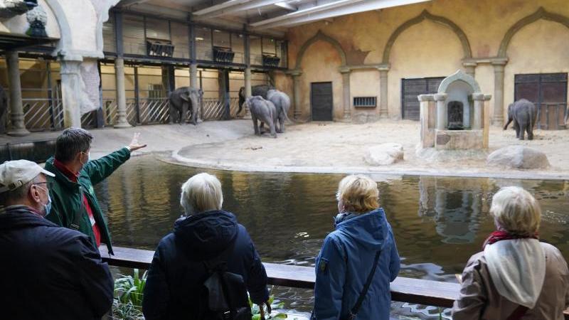 Tierpark Hagenbeck bietet Sonderführungen für Senioren an