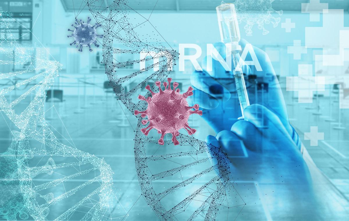 Biontech/Pfizer und Moderna - Wie mRNA-Impfungen im Körper wirken
