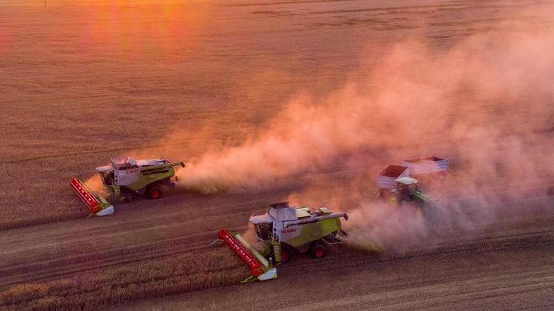 Unterdurchschnittliche Getreideernte in Rheinland-Pfalz