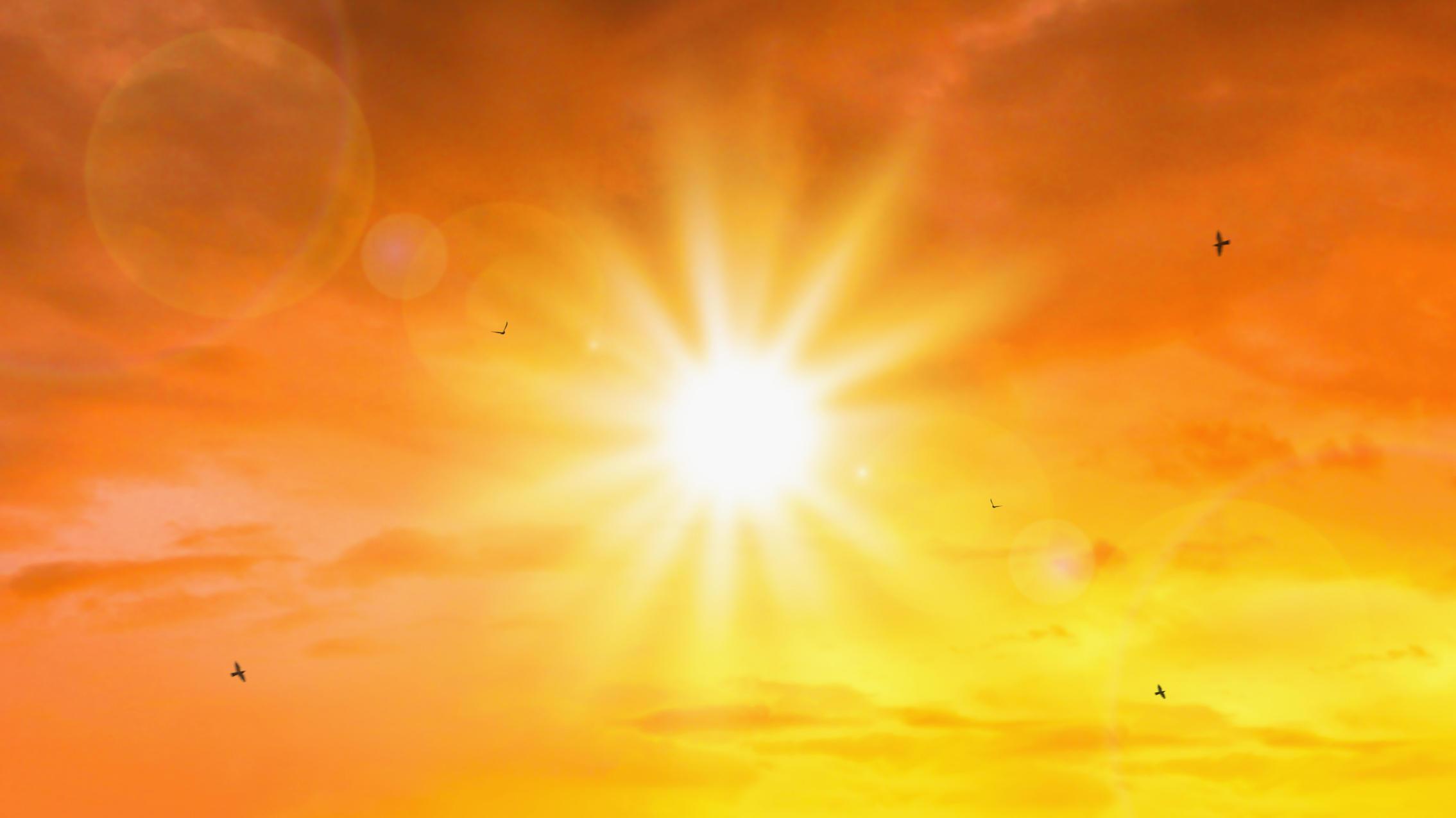Sonne, Sonne, Sonne - Dauersonne und ihre Folgen