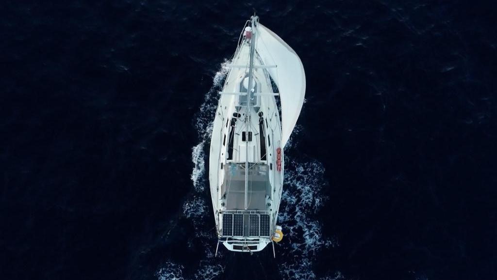 Sie ließ (fast) alles zurück! Berlinerin Jonna Kilian-Vostell segelt 3 Jahre lang mit ihrer Hündin durch die Welt