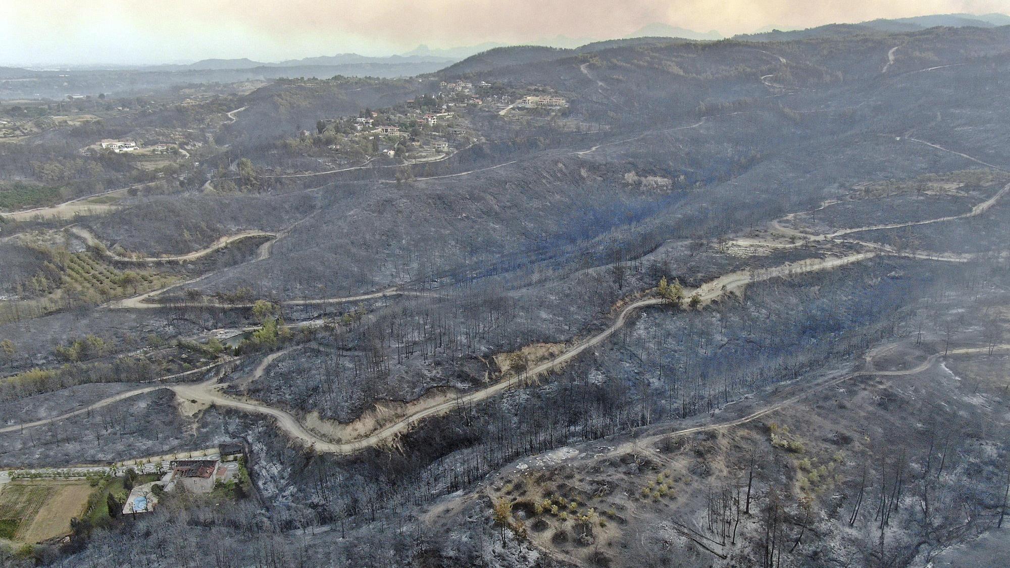 Waldbrände in der Türkei: Mehrere Tote - Orte an Mittelmeerküste evakuiert