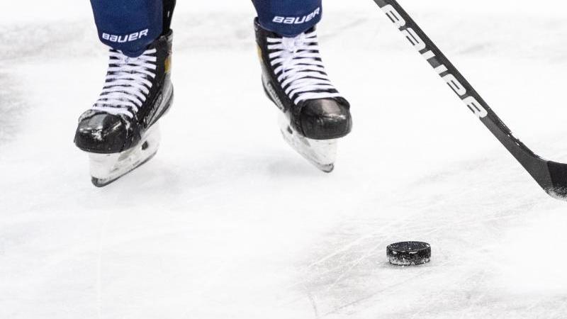 Nürnberg Ice Tigers und Straubing Tigers: Spiele verlegt