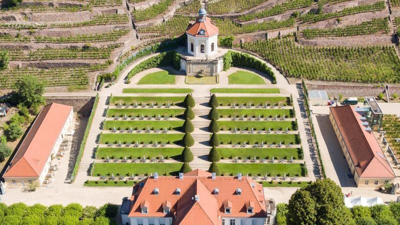 Winzer und Touristiker im Elbland hoffen auf Sommergäste