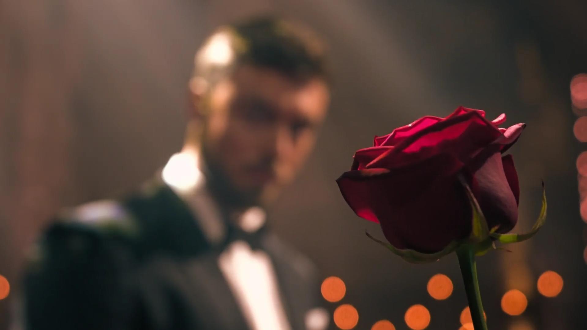 Bachelor 2021: Küsse, Tränen, Zickenkrieg - SO aufregend wird die Staffel in Deutschland!