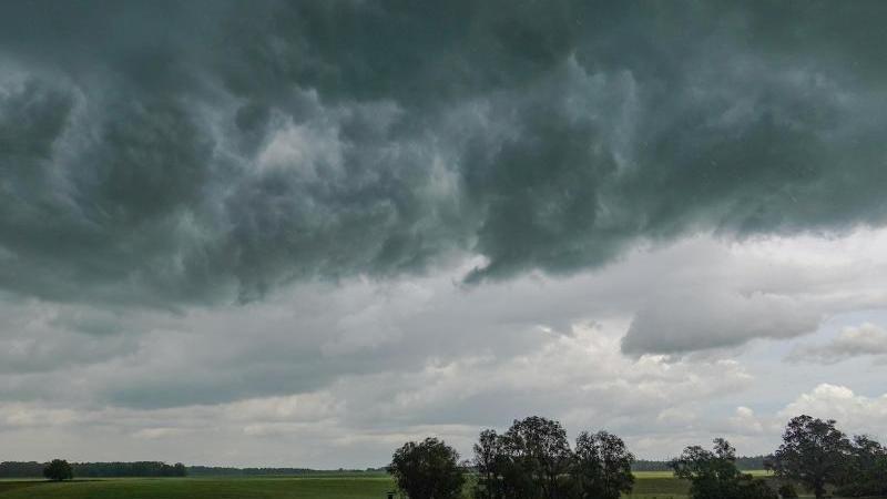 Gewitter und teils Starkregen in Berlin und Brandenburg