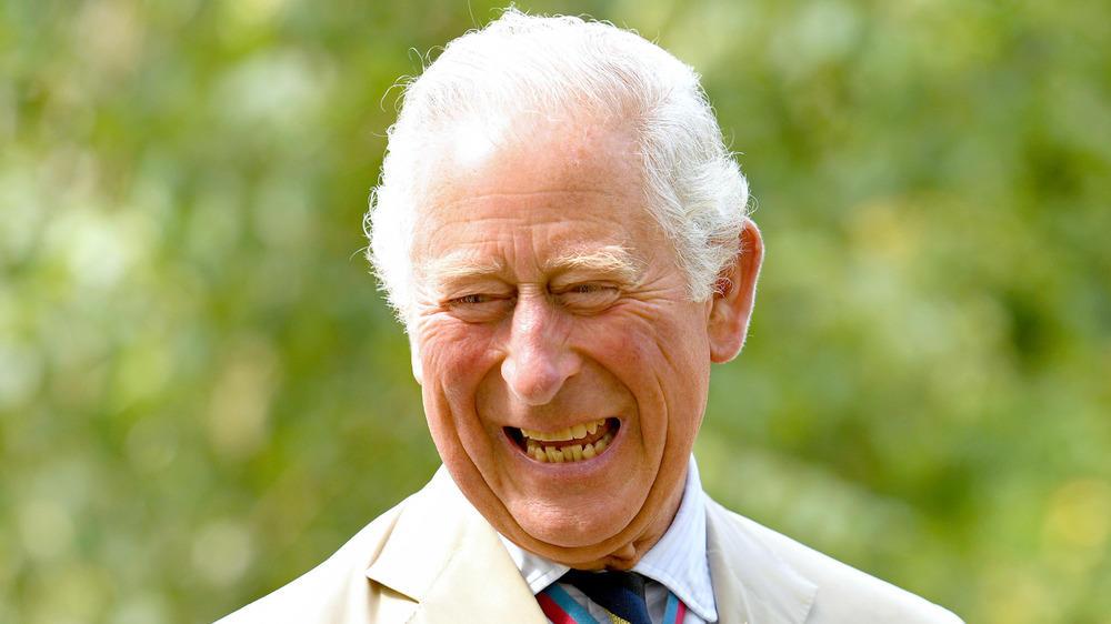 Prinz Charles: Das sind seine Pläne als König