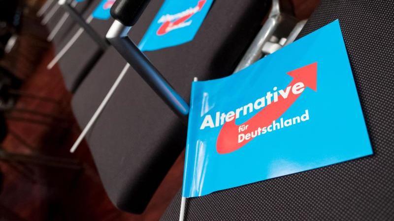 Sachsen-Anhalt-AfD wählt Vorstand